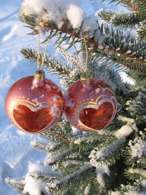 Мира и процветания тебе в Новом году, Южная Осетия!