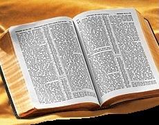 Прокуратура предупредила «Свидетелей Иеговы» в Моздоке: экстремистская литература – вне закона, но не в Интернете