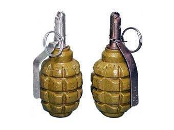В Ардоне в доме жителя обнаружены две гранаты