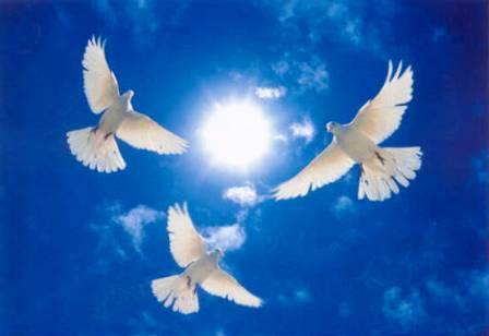 Инара ГАБАРАЕВА: «Наши сердца сейчас вместе с вами»