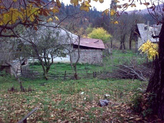А вот старенькая хибара в месте с готическим названием Морго. Это район населяют Джиоевы, а чуть ниже расположены поселения Гасиевых (если я ничего не путаю). Чуть выше скалы, кругом леса, одним словом – красиво.