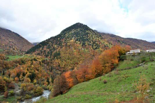 А эти виды открываются по дороге из Цхинвала во Владикавказ, могу сказать одно – безумно красиво.
