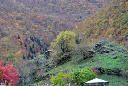 Вот он настоящий горский пейзаж, передающий дух горских народов – деревья на скалах выглядят как элита лесного народа.