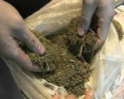 В Мостиздахе у сельчанина обнаружено полкило марихуаны