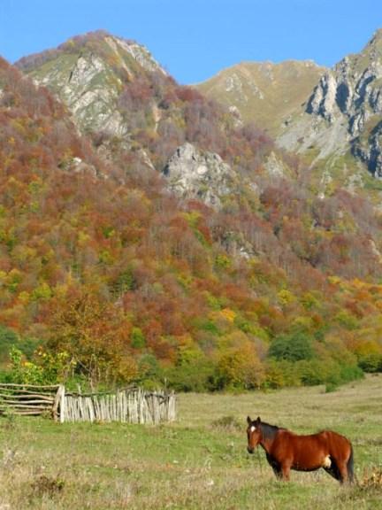 Tadelet_scenery1-1