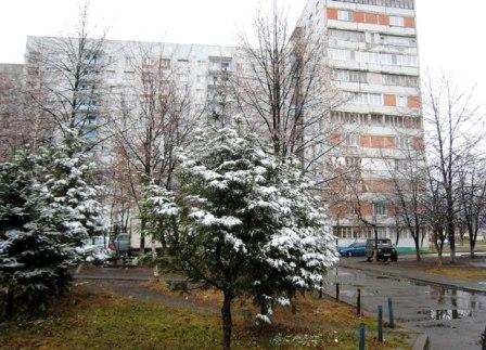 После рекорда декабря новогодний снег все-таки зацепил Владикавказ