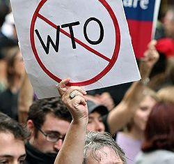 Грузия не уйдет с дороги в ВТО