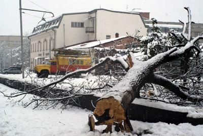 Апрельский снегопад вызвал в Северной Осетии чрезвычайную ситуацию