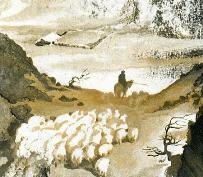 Майский снег на Крестовом перевале вынудил операцию по спасению овец