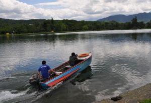 Толстолобик и белый амур очистят Водную станцию во Владикавказе от водорослей