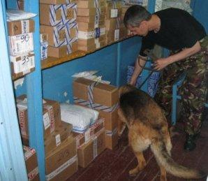 Наркотики – почтой. Во Владикавказе задержали поставщика спайса и марихуаны