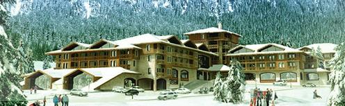 Планируется, что курорт МАМИСОН примет первых гостей через три года