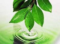 Во Владикавказе обсудили республиканскую целевую программу экологического благополучия до 2017 года