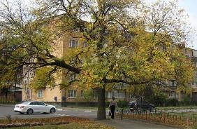 Прогулки по Владикавказу. Осень октября