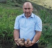 Картофель с горного склона