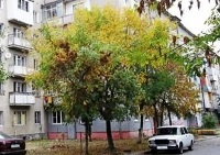Во Владикавказе разбился 40-летний мужчина, выпавший с балкона