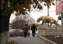 Осенние березки и лебеди Владикавказа
