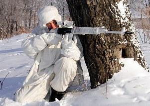 В Республике Южная Осетия на авансцену вышли снайперы