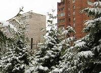 Владикавказ встречает Новый год свежим снегом