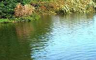 Житель Эльхотово утонул во время купания