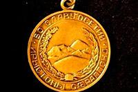 Андрей КАРГИНОВ удостоен медали «Во Славу Осетии»