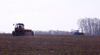 Северную Осетию ждет прибавка местных овощей и картофеля