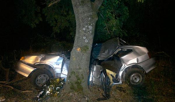 На трассе в Северной Осетии «Жигули» врезались в дерево: трое погибших