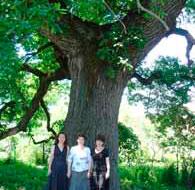 Сакральный памятник Ардонской флоры