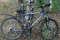 Мода на украденный велосипед