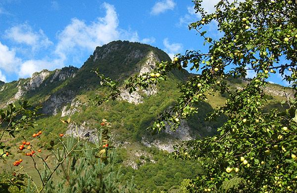 Первозданная природа – единственный «товар» Южной Осетии, не зависящий от времени и чиновников