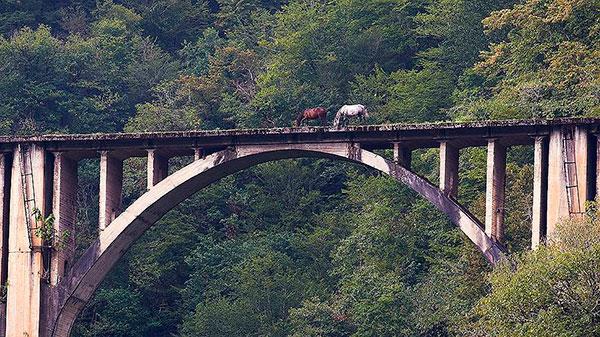 Безграничная Абхазия