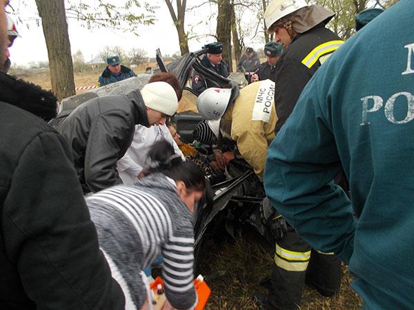 На федеральной трассе «Кавказ» автомобиль «ВАЗ-2114» врезался в дерево, водитель погиб
