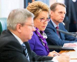 В Совете Федерации обсудили реализацию Стратегии государственной национальной политики