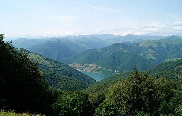 Флора и фауна Южной Осетии