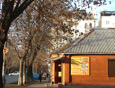 Владикавказ дождался в декабре бархатного сезона
