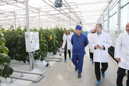 Сергей ДЗАНТИЕВ: «Теплицы – отличный способ получения большого урожая»