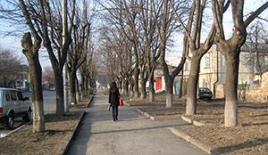 Теплый день во Владикавказе едва не принес новый температурный рекорд