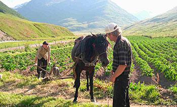 Заметки по истории населенных пунктов Северной Осетии – БАД
