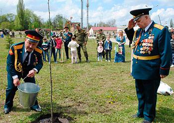 В новом Парке Победы деревья посадили Герои России