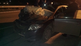 На трассе в районе Беслана в ДТП погибли два жителя Чеченской Республики