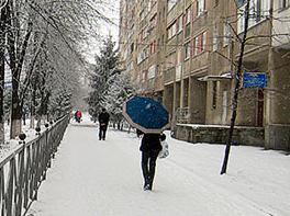 Владикавказ: погода в январе – чуть лучше нормы
